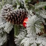 Temps_fort_Noël_dec-18_29